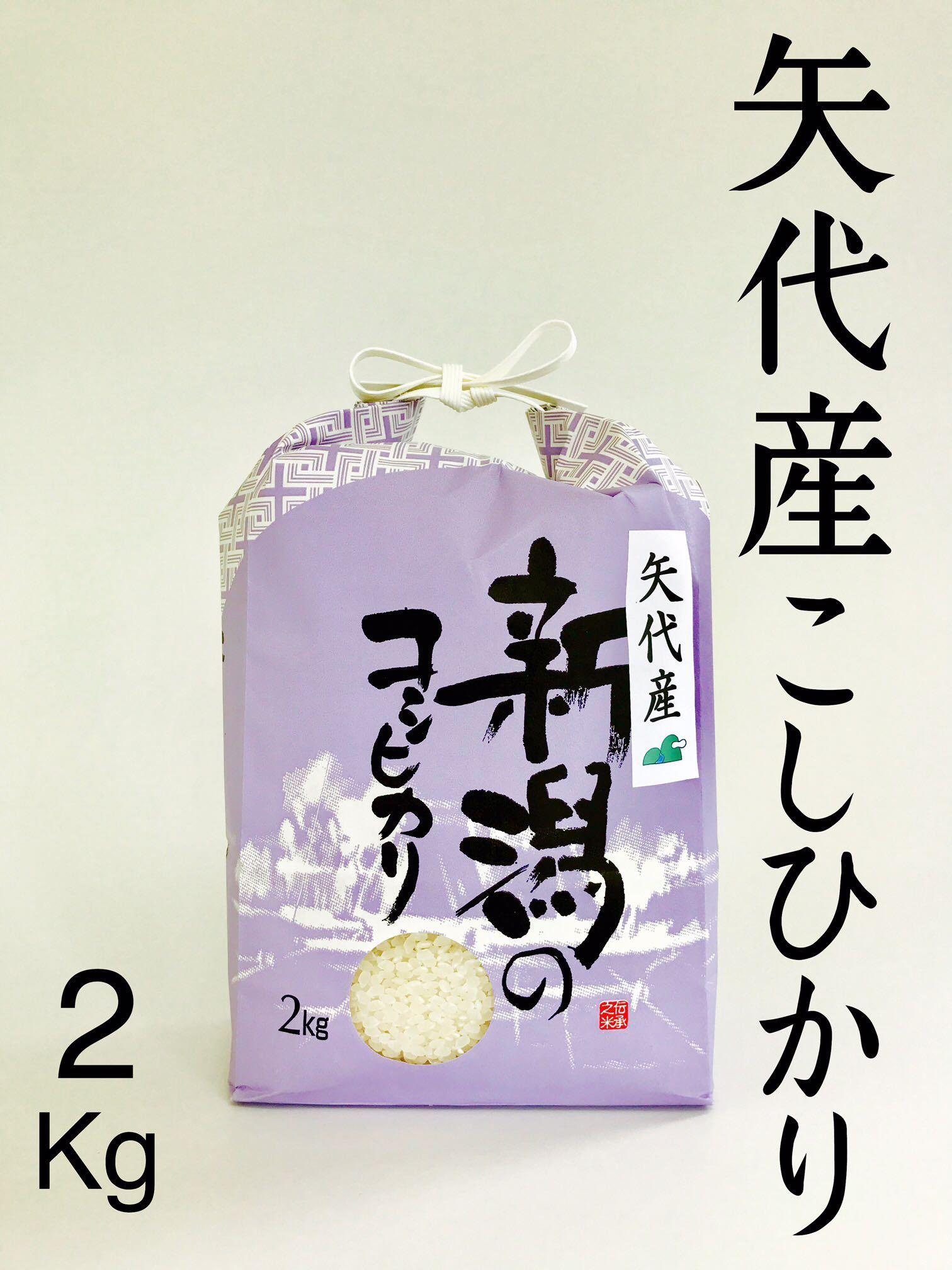 矢代産コシヒカリ2キロ