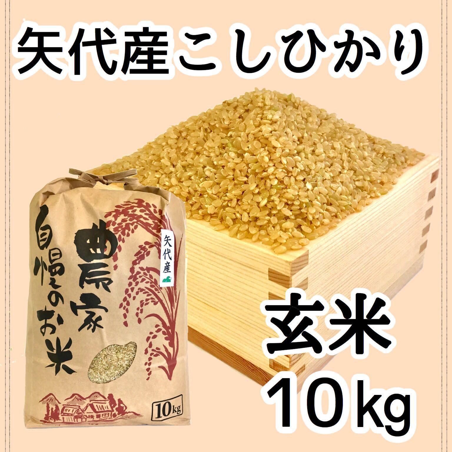 矢代産コシヒカリ玄米5キロ