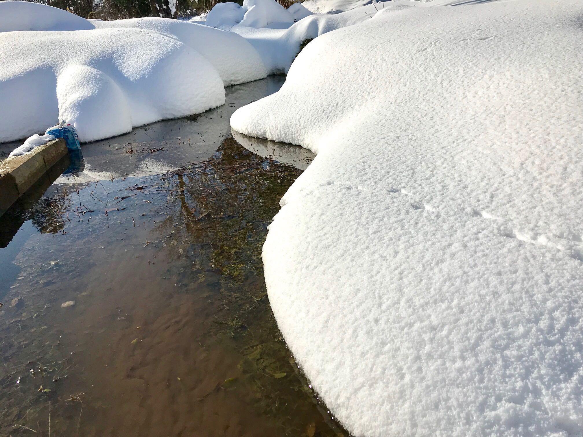 雪モコモコ