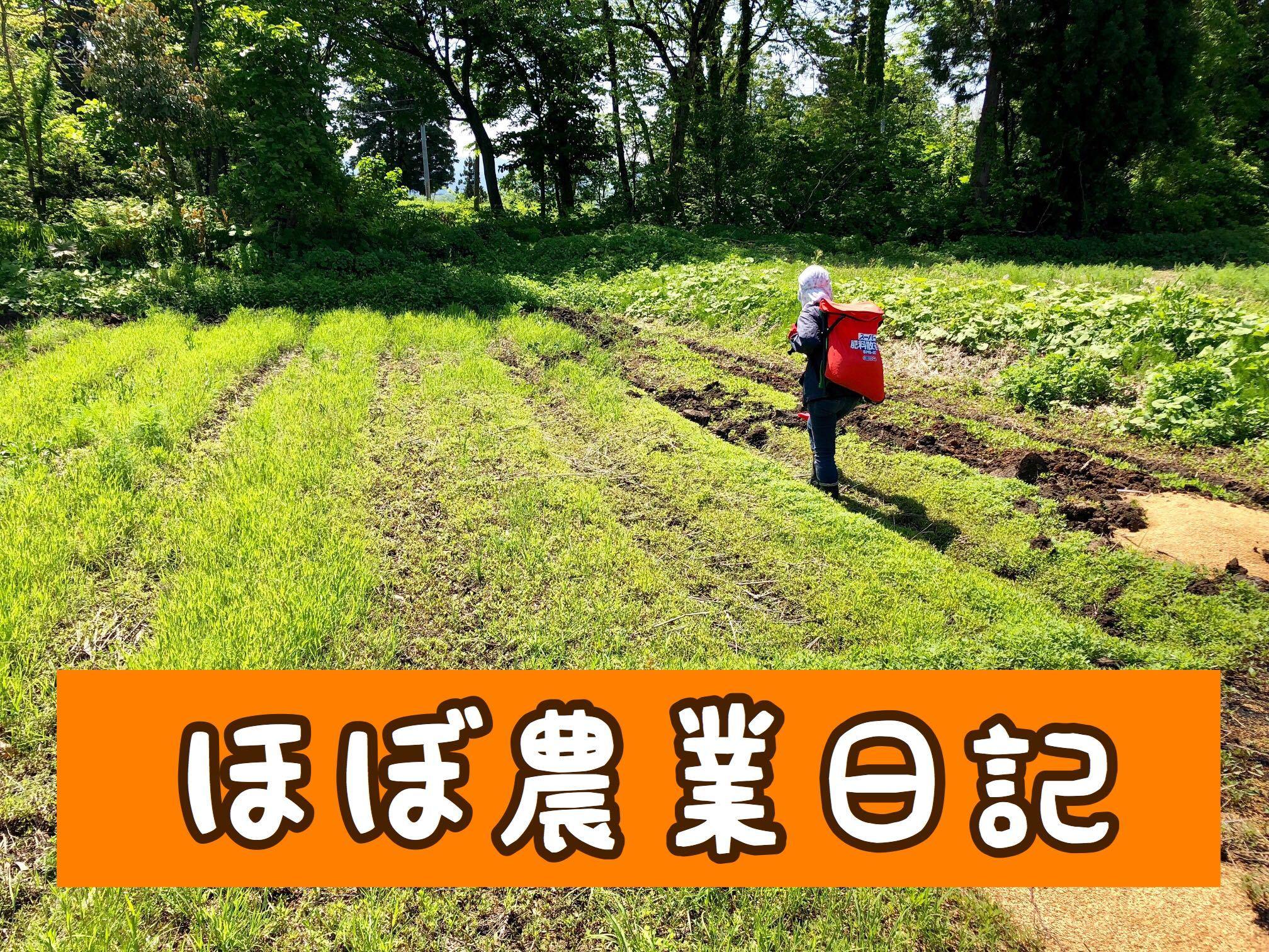 ほぼ農業日記