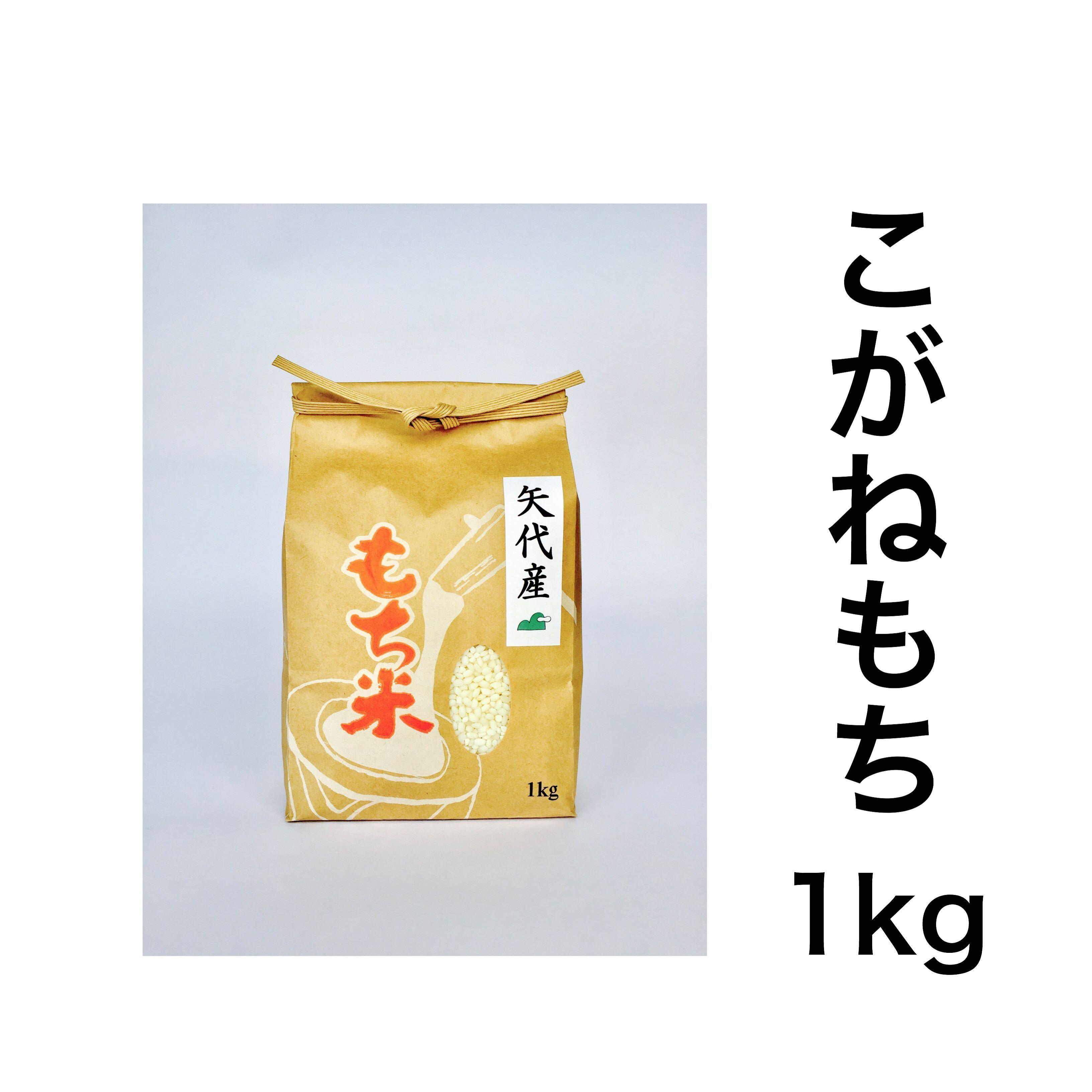 矢代産こがねもち【白米】1kg