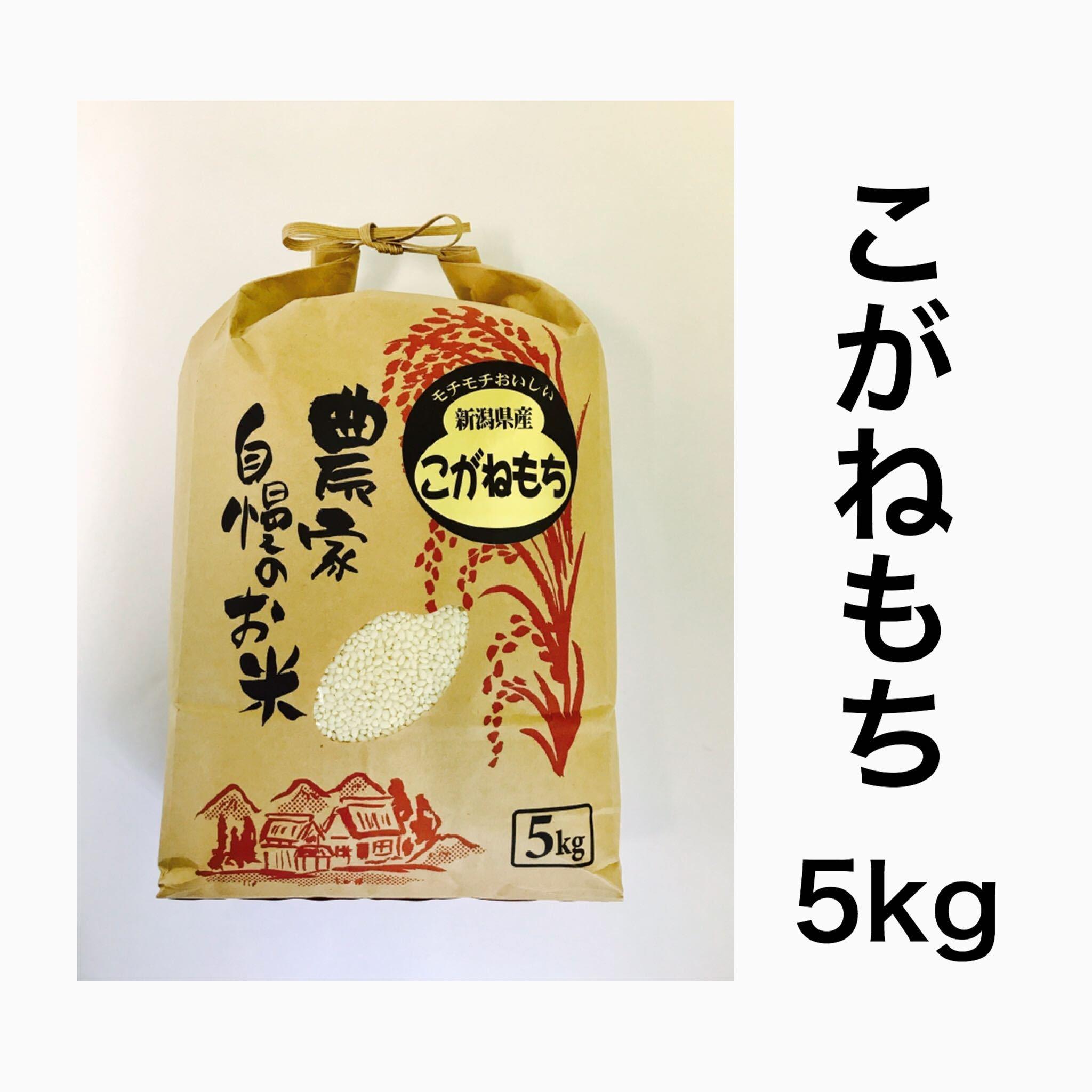 矢代産こがねもち【白米】5kg