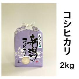 矢代産コシヒカリ【白米】2kg