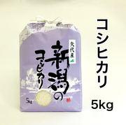 新潟県妙高市矢代産コシヒカリ 5㎏ 【白米】 令和2年産 一等米
