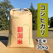 新潟県妙高市矢代産コシヒカリ 30㎏ 【玄米】 令和2年産 一等米